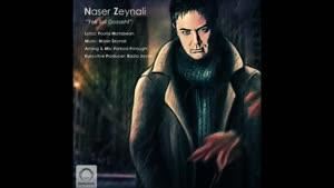 آهنگ یک سال گذشت از ناصر زینعلی