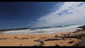 چشم انداز هاوایی با وضوح HD