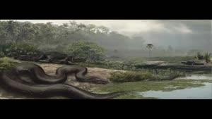 ترین های تاریخ جانوران (دیدنی )