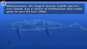 ۱۰ هیولای مرگ آور تاریخ دریاها