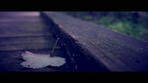 ویدیو طبیعت زیبا