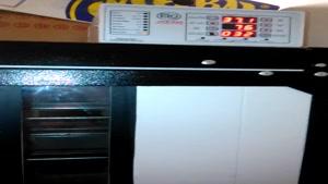 جوجه کشی از غاز در دستگاه جوجه کشی 168 تایی