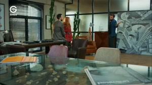 سریال عشق اجاره ای دوبله فارسی قسمت ۲۰۴