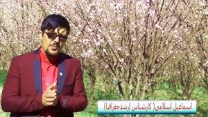 جاذبه های طبیعی وگردشگری استان چهارمحال وبختیاری