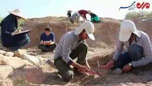 فیلم/ تپهای که تاریخ شیراز را ۶ هزار ساله می کند