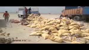 معدوم سازی ۲۵ تن ميوه وارداتی بدون مجوز