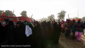 مداحی میثم مطیعی به مناسبت کشتار شیعیان نیجریه