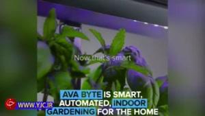 گلدان هوشمند برای محیط های آپارتمانی