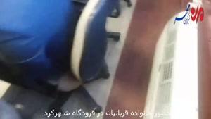 حضور خانوادههای قربانیان هواپیمای ترکیهای در فرودگاه شهرکرد