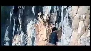نجات بزها از سرمای زمستان