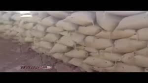 سوسک سیاه در جبهه های جنگ با داعش