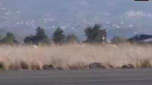 فیلم/ عملیات هوایی مشترک روسیه و سوریه