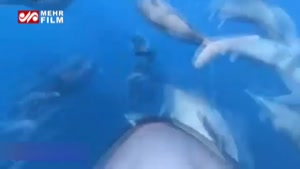 جت اسکی جالبی که همانند دلفینها در آب شنا میکند