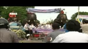 برگزاری همه پرسی قانون اساسی به وسیله فیلها