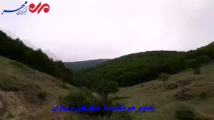 تصاویر زیبا از جنگل های ارسباران در آذربایجان شرقی