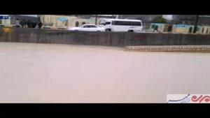 فیلم/ غرش رودخانه فصلی جم