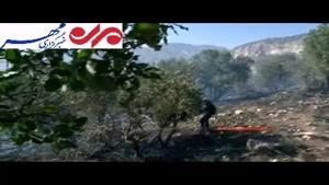 آغاز آتش سوزی در سطح جنگل های ایلام
