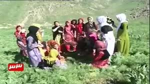 لباس محلی مردم کرمانشاه