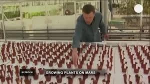 گیاهان در خاک کره مریخ چگونه می رویند؟