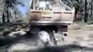 روش تخلیه الاغ در ایران