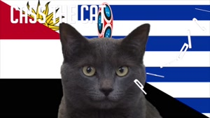 گربه پیشگو جام جهانی روسیه برد اروگوئه را در مقابل مصر پیش گویی کرد