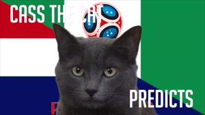 گربه پیشگو جام جهانی روسیه برد کرواسی را در مقابل نیجریه پیش گویی کرد