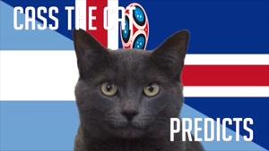 گربه پیش گو جام جهانی روسیه برد آرژانتین را در مقابل ایسلند پیش گویی کرد