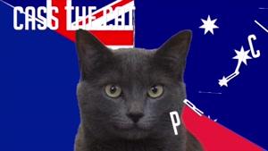 گربه پیشگو جام جهانی روسیه برد فرانسه را در مقابل استرالیا پیش گویی کرد