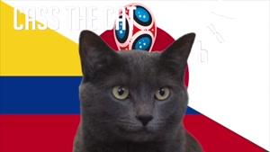گربه پیشگو جام جهانی روسیه برد کلمبیا را در مقابل ژاپن پیش گویی کرد