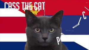 گربه پیشگو جام جهانی روسیه برد کاستاریکا را در مقابل صربستان پیش گویی کرد