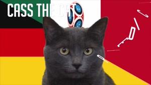 گربه پیشگو جام جهانی روسیه برد آلمان را در مقابل مکزیک پیش گویی کرد
