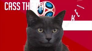 گربه پیشگو جام جهانی روسیه برد دانمارک را در مقابل پرو  پیش گویی کرد
