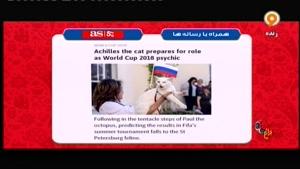 پیش بینی نتیجه بازی های جام جهانی ۲۰۱۸ توسط گربه ناشنوا