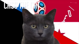 گربه پیشگو جام جهانی روسیه برد بلژیک را در مقابل پاناما پیش گویی کرد