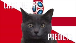 گربه پیشگو جام جهانی روسیه برد انگلیس را در مقابل تونس پیش گویی کرد