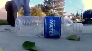 اگر بطری آب معدنی خود را دور بریزید چه می شود