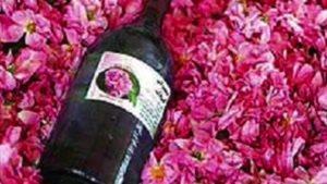 خواص گل رز