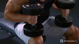 اموزش بدن سازی دمبل پرس سینه  fitness