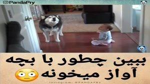 آوز خوندن سگ با بچه