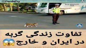 تفاوت زندگی در ایران و خارج