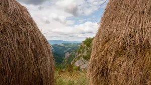 طبیعت زیبای صربستان