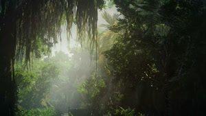 تیزر جدید بازی Hitman ۲ - به جنگل خوش آمدید