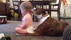 بچه خوشش اومده