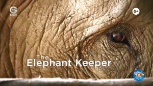 انیمیشن آموزش زبان انگلیسی دنیای حیوانات قسمت چهارده