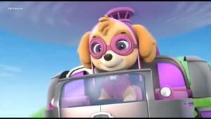 کارتون سگ های نگهبان - تعمیر ابر دوچرخه