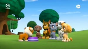 کارتون سگ های نگهبان - سگ ها و رابِل