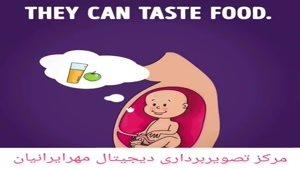 احساسات جنین در داخل رحم