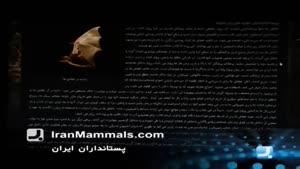 برنامه به روز - معرفی وب سایت، نرم افزار