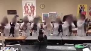 ساخت ویدئوی تاسف برانگیز از رقص گربه مرده