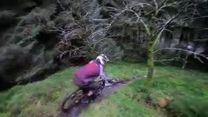 جنگل و دوچرخه سواری به به